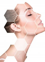 Beautiful female face in honeycombs. Spa and face lifting concept. Isolated on white.